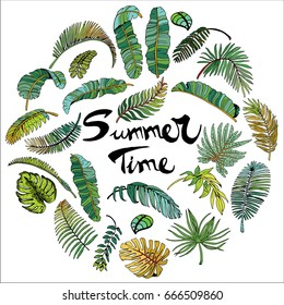 Tropical Palm Leaves in Circle. Exotic Leaf Background. Hand Drawn illustration with Summer Time Lettering.