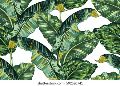 Tropical Leaves Hd Stock Images Shutterstock All the textures previews were loaded in low resolution. https www shutterstock com image vector tropical palm leaves jungle leaf seamless 592520741