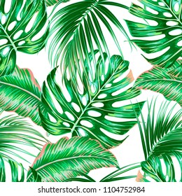 tropical palm leaves jungle leaf seamless stock vector royalty free