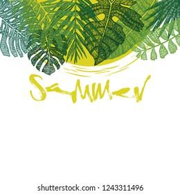 Tropical palm leaves Sammer background set