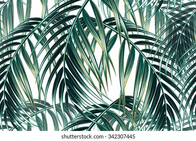Tropical palm leaves seamless vector floral pattern background