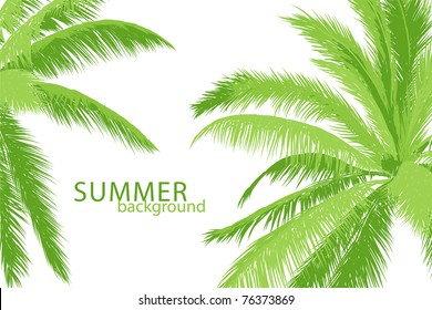 tropical palm in marine breaker and sunlight (vector illustration)