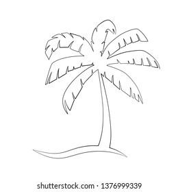 Tropical Palm tree sketch, doodle, vector icon.