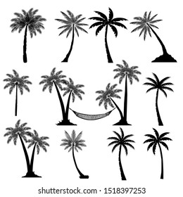 Tropical Palm Trees Set Silhouettes. Vector illustration Black isolated on white background. Illustration In Nature Style. For Web Banners, Posters, Cards, Wallpapers.