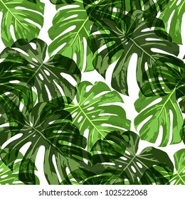 Tropical Pattern. Seamless Texture with Bright Hand Drawn Leaves of Monstera. Summer Rapport for Print, Cloth, Fabric. Vector Seamless Background with Tropic Plants.