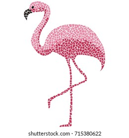 Tropical pink flamingo bird on white background. Vector isolated modern fashion template.