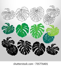 Tropical plant set isolated on abstract background