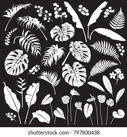 Tropical plant set. White silhouettes of palm leaves, banana plants, monstera, tropic flowers isolated on black background. Vector flat illustration.
