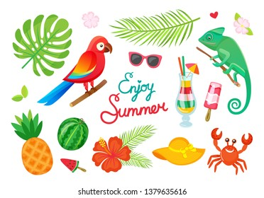 Tropical plants and animals, enjoy summer, cocktails and fruits vector. Parrot and gecko, ice cream and drink, palm leaves and watermelon, pineapple