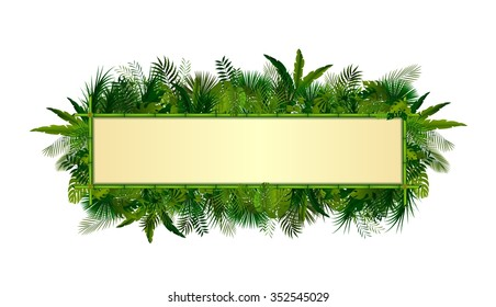Tropical plants background. rectangle floral frame with space for text in concept bamboo .Vector