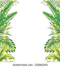 tropical plants mirror background