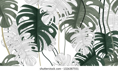 Tropical plants and white background pattern-vector