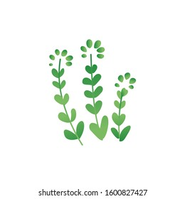 Tropical or prehistoric period of dinosaurs plants similar to the shape of leaves on the fern or grass icon flat vector illustration isolated on white background.