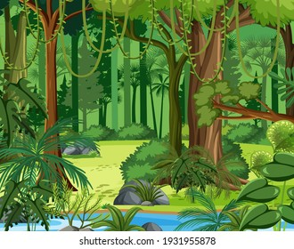 Tropical rainforest scenes in jungle forest