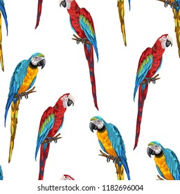 Tropical seamless pattern with parrots. Hand drawn exotic birds.