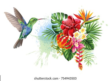 Tropical summer arrangements with  humming-bird, palm leaves, exotic flowers and butterflies. Vector illustration.