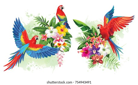Tropical summer arrangements with parrots, palm leaves, exotic flowers and butterflies. Vector illustration.