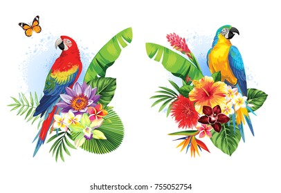 Tropical summer arrangements with  parrots, palm leaves and exotic flowers. Vector illustration.