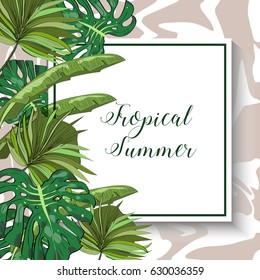 Tropical summer collection of hand drawn exotic leaves. Vector illustration.