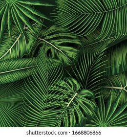 Tropical summer leaves background with jungle plants