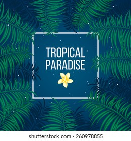 Tropical summer night under sky full of stars and palm leaves background template vector illustration.