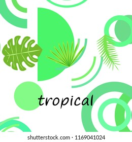 tropical summer tropical plant vector background