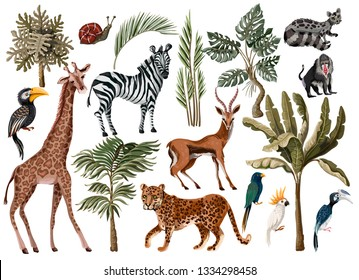 Tropical tree elements such as palm, monstera and jungle animals isolated.
