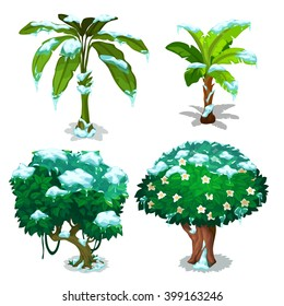 Tropical trees and plants frozen under the snow. Vector illustration.