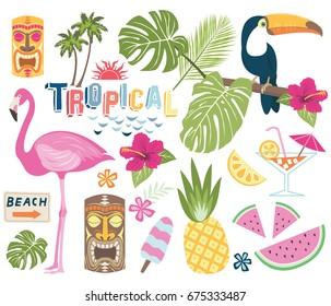 Tropical Vector Collection.