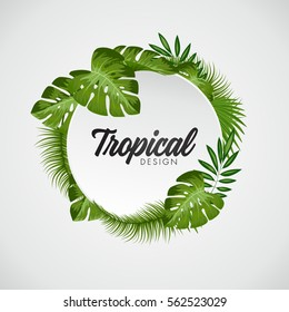 Tropical Vector Illustration with place for your text. Exotic Plants Background, Frame Design with Leaves