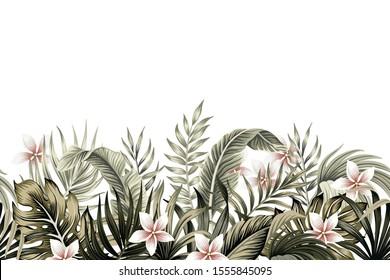 Tropical vintage botanical palm leaves, banana leaves, plant floral, plumeria flower seamless border white background. Exotic green jungle wallpaper.