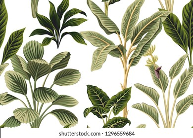Tropical vintage botanical palm trees, banana tree and plants floral seamless pattern white background. Exotic jungle wallpaper.
