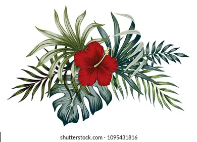 Tropical vintage hibiscus  floral green leaves bouquet. Vector clip art. Jungle illustration