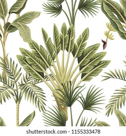 Tropical vintage palm trees, banana tree floral seamless pattern white background. Exotic botanical jungle wallpaper.