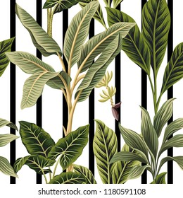 Tropical vintage palm trees, banana tree floral seamless pattern black and white stripes background. Exotic botanical jungle wallpaper.