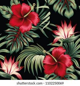 Tropical vintage red hibiscus and strelitzia floral green palm leaves seamless pattern black background. Exotic wallpaper