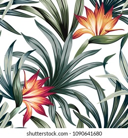 Tropical vintage strelitzia floral palm leaves seamless pattern white background. Exotic wallpaper
