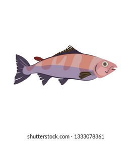 Tropical water bonefish. Atlantic mackerel fish. Can be used for topics like seafood, fishing, animal