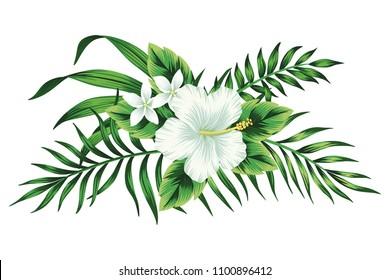 hibiscus clip art images stock photos vectors shutterstock rh shutterstock com hibiscus clip art free images hibiscus clipart border