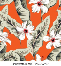 Tropical white hibiscus flowers, banana palm leaves, red background. Vector seamless pattern. Jungle foliage illustration. Exotic plants. Summer beach floral design. Paradise nature