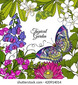 Tropical wild birds and flowers and space for text. Colored vector illustration.