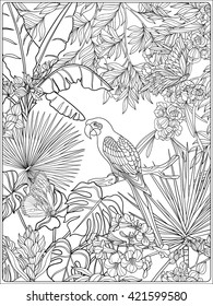 Tropical Plants Coloring Pages Images Stock Photos