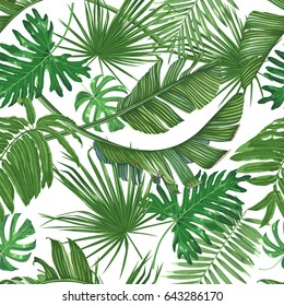 Tropics, palm leaves, jungle. Seamless vector pattern.