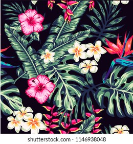 Tropics Pattern spring summer background with tropical flowers palm