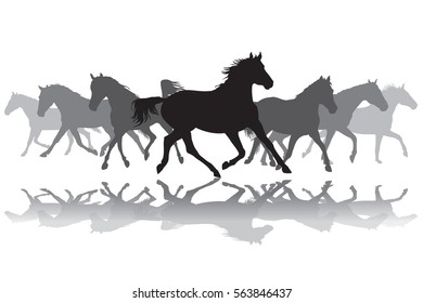 Trotting black and grey horses silhouette on white background vector illustration