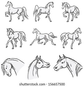 Trotting Horses Collection