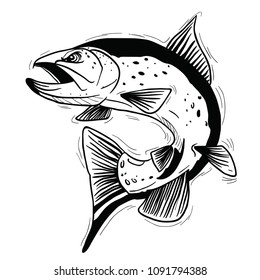 trout fish cartoon illustration isolated on white
