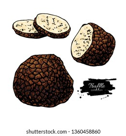 Truffle mushroom hand drawn vector illustration set. Sketch food drawing isolated on white background with sliced pieces. Organic vegetarian product. Great  for menu, label, product packaging, recipe