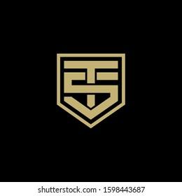 TS logo design. Vector illustration.