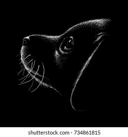 T-shirt dog  background.  The Vector logo dog for T-shirt design or outwear.  Hunting dog  style background.